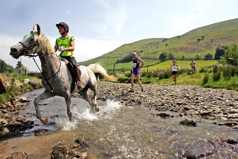 Man -V- Horse race